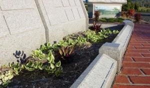 Garden Scatter